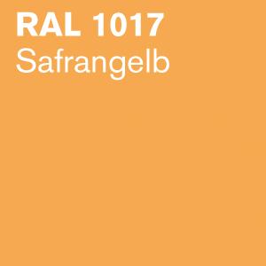 1017-klein